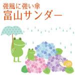 富山サンダーの傘は楽天で!丈夫な20本骨。ウォーターバリアで超撥水。